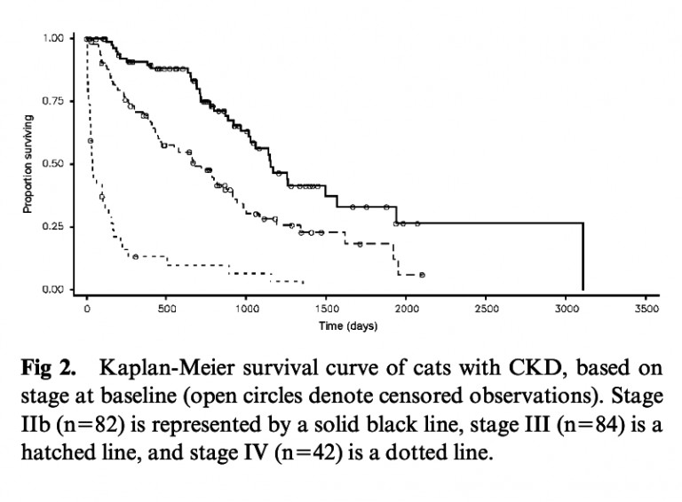 Survival In Cats With Naturally Occurring Chronic Kidney Disease 2000 2002 Vet Smart Bulario